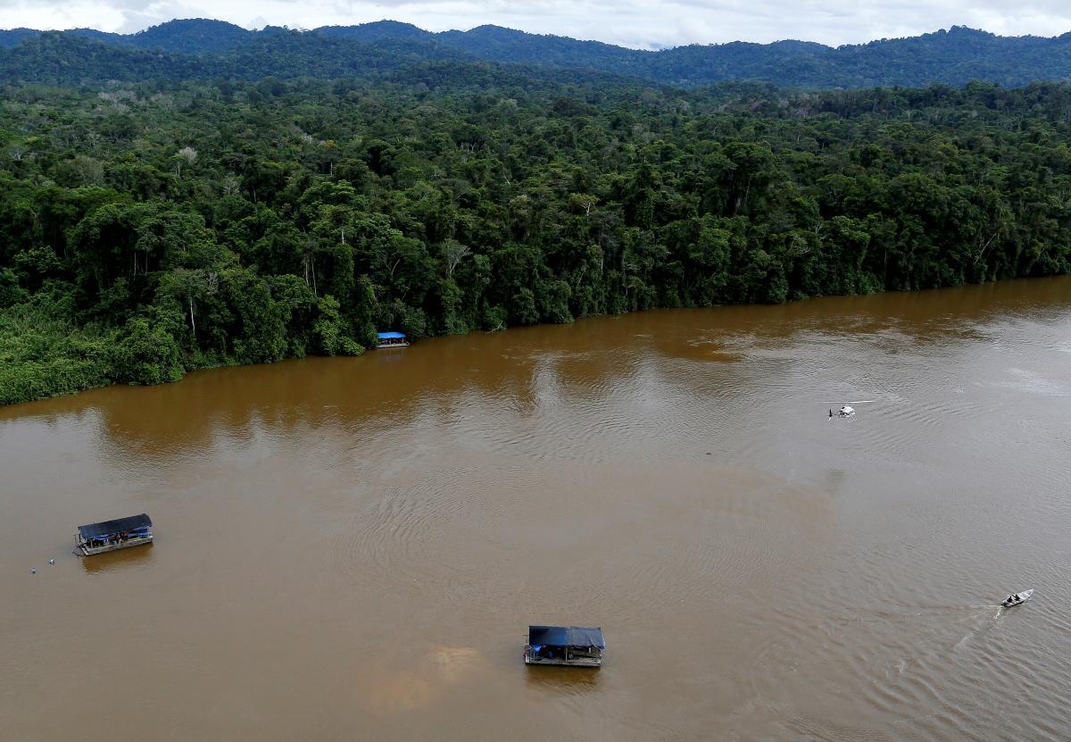Джунгли поглощают и накапливают CO₂ эффективнее других видов лесов / фото REUTERS