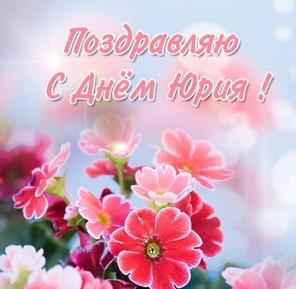 С днем Юрия 2021 / фото iecards.ru