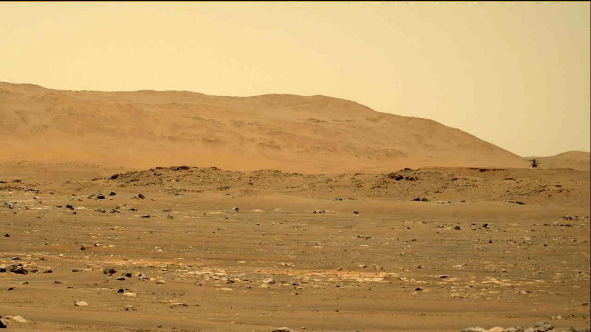 Марсіанський вертоліт Ingenuity з відстані 80 м / фото NASA / JPL-Caltech / ASU / MSSS