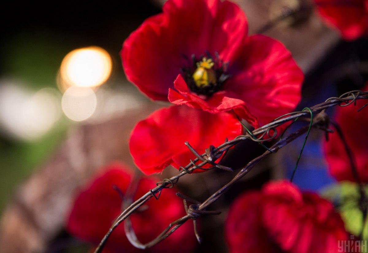 """Символом Дня пам'яті є червоний мак і гасло """"1939-1945. Ніколи знову"""" / фото УНІАН, Михайло Марків"""