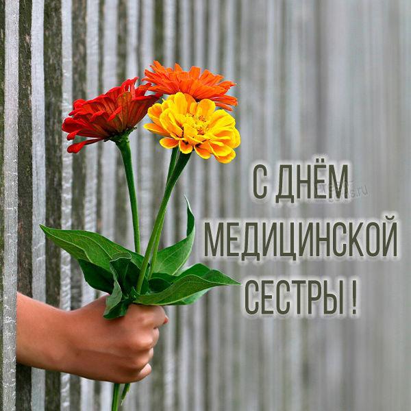 Поздравления с Днем медсестер / fresh-cards.ru