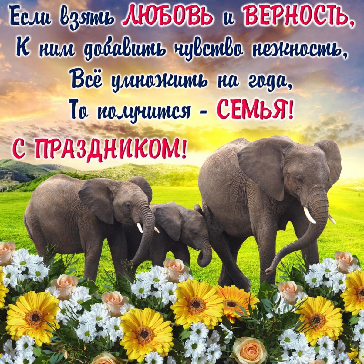С Днем семьи картинки / фото bonnycards.ru