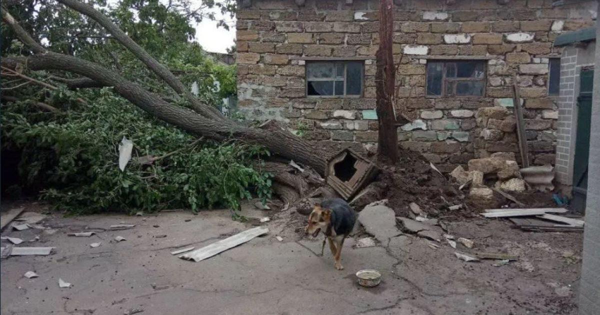 Местами ураган взламывал деревья / Фото khersonci.com.ua