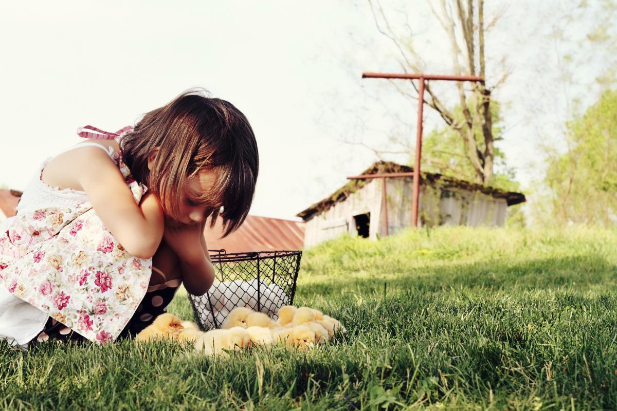 В США фиксируют вспышки сальмонеллеза / фото ua.depositphotos.com