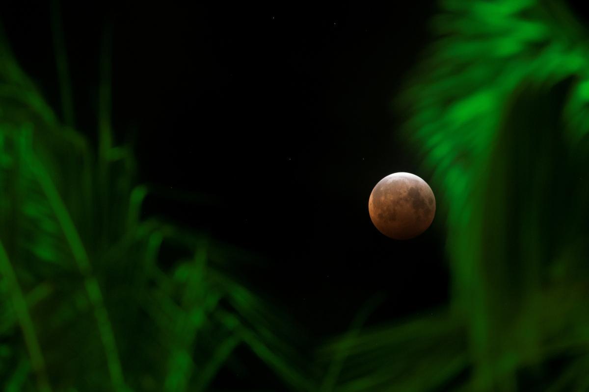 Суперлуние 26 мая / фото REUTERS