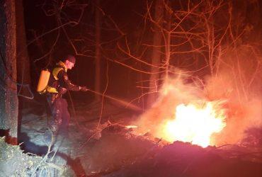 ГСЧС предупреждает: в Украине объявлен наивысший уровень пожарной опасности