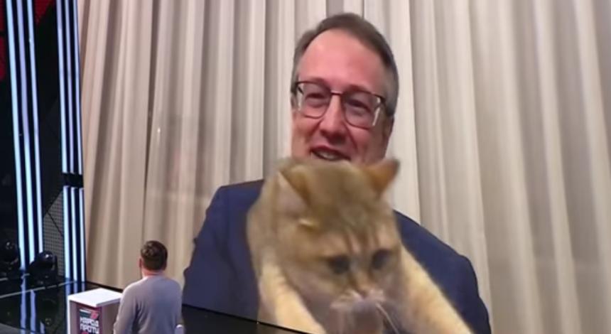 Кот Антона Геращенко внезапно попал в кадр в прямом эфире: курьезное видео