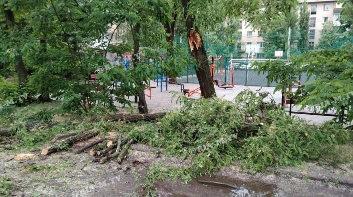 В Мелитополе сегодня ночью и утром был ливень со шквальным ветром / фото ria-m.tv