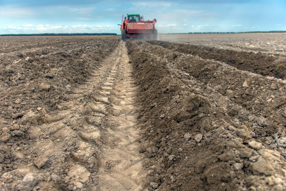 Закон призван обеспечить финансовую стабильность производителей в случае неблагоприятных погодных условий / фото ua.depositphotos.com
