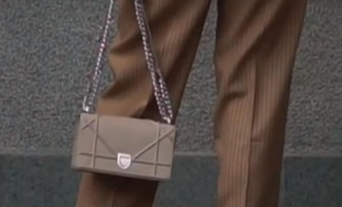 Фотографы разглядели у Эллы Репиной сумочку от Dior за более чем 2 тысячи долларов / скриншот