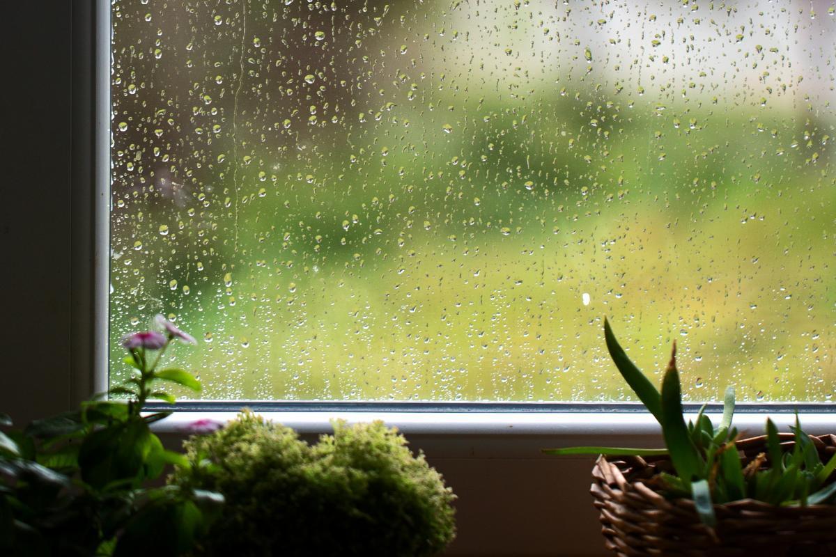 14 сентября в Украине ожидаются дожди / фото ua.depositphotos.com