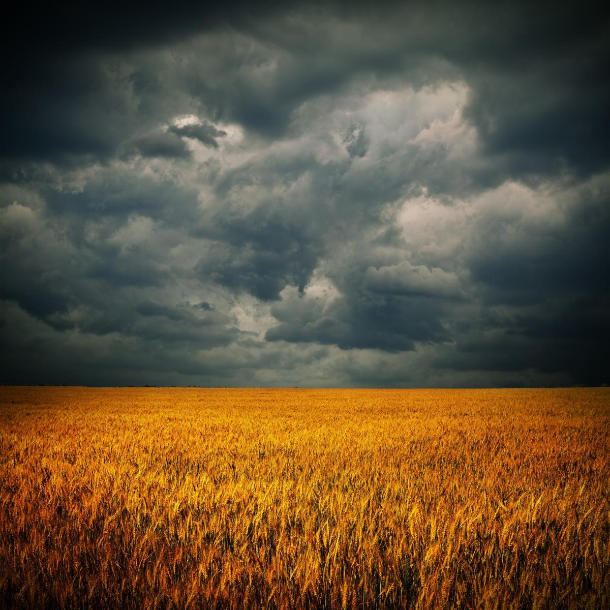Сьогодні на сході, півдні та в центрі України очікуються грози / фото ua.depositphotos.com