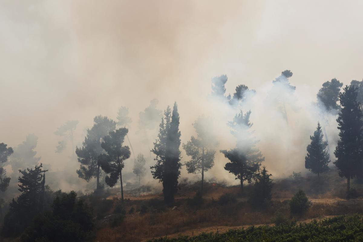 В Израиле разгорелись лесные пожары / фото REUTERS