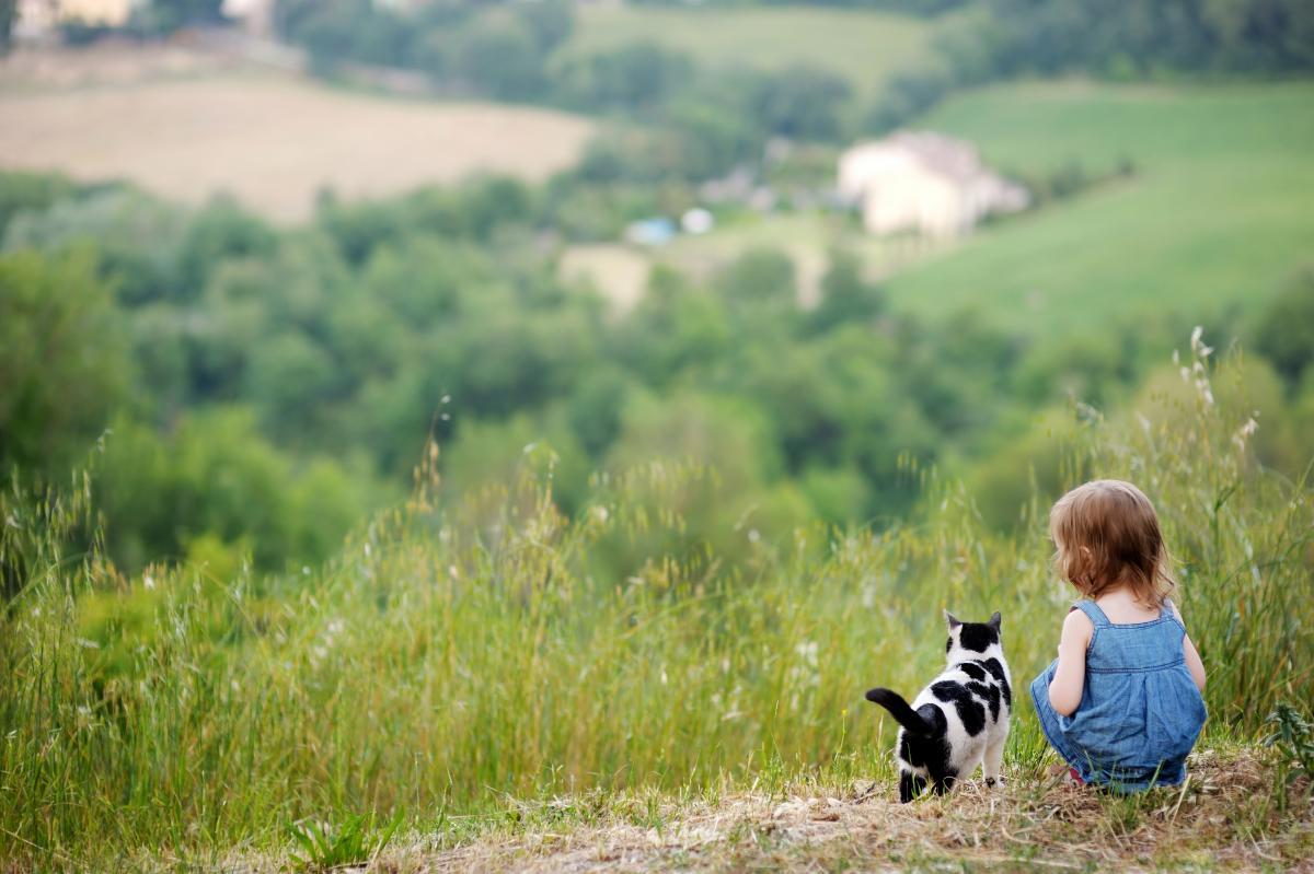 13 августа в Украине будет хорошая погода / фото ua.depositphotos.com