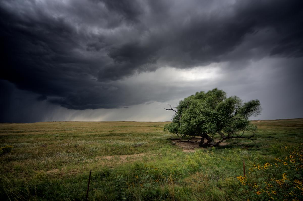 В Украине объявили штормовое предупреждение / фото ua.depositphotos.com