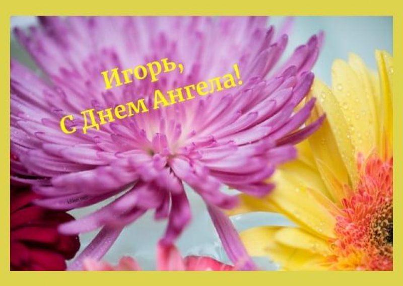 Картинки з Днем ангела / klike.net