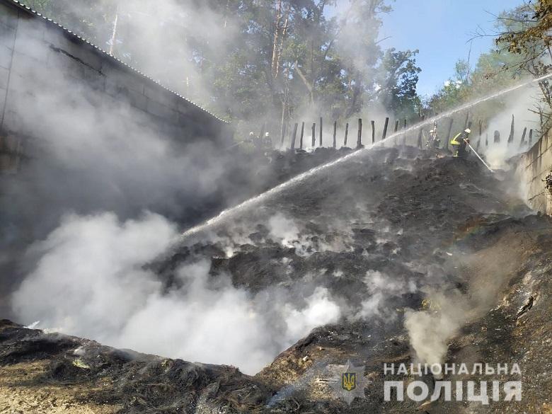 Возгорание ликвидировали / фото: Нацполиция