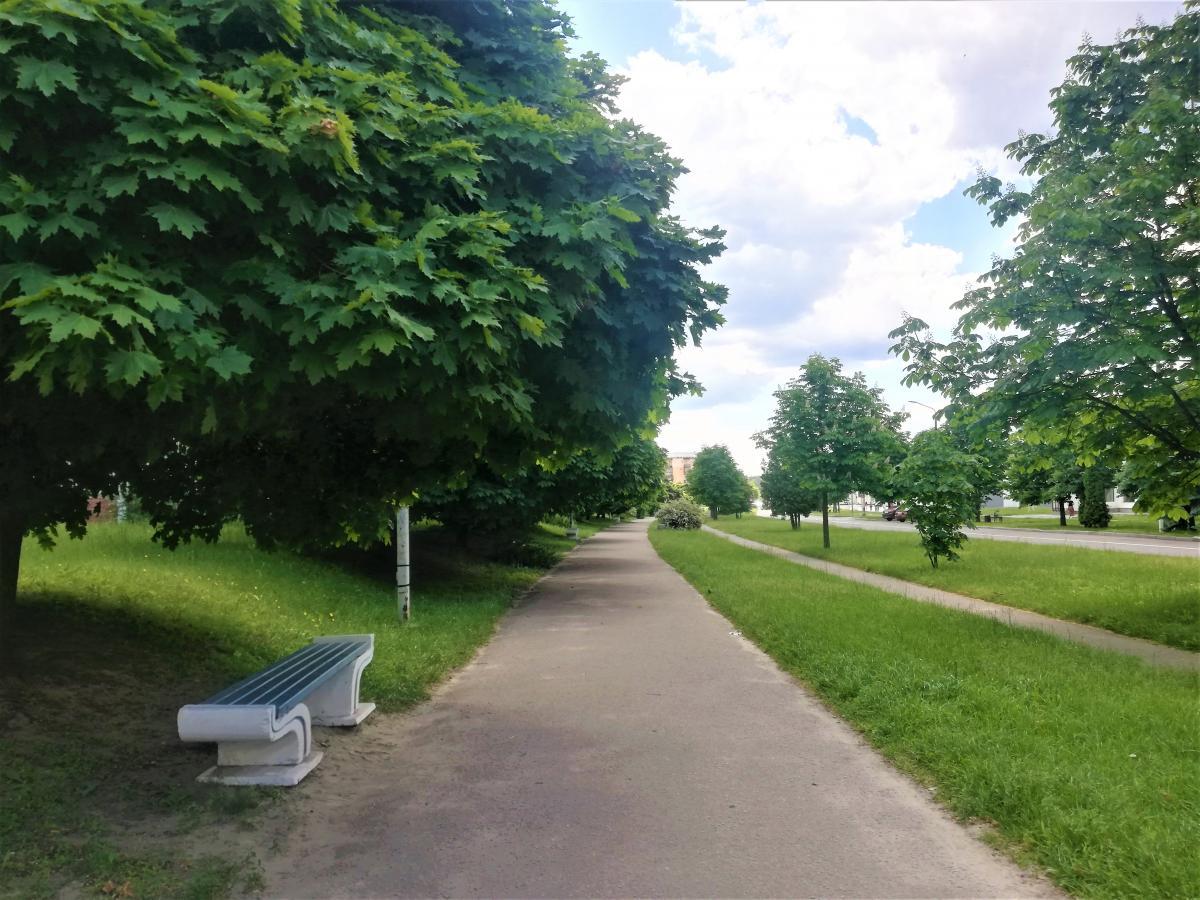 У Славутичі немає громадського транспорту, але є велодоріжки / фото Марина Григоренко
