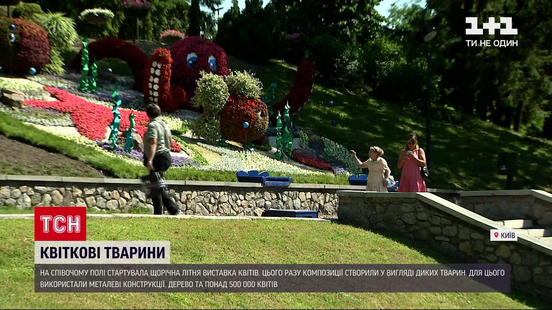 На Певческом поле в Киеве отрылась яркая выставка цветов / скриншот
