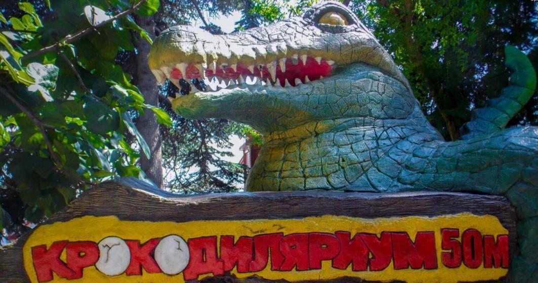 Ялтинський крокодиляріум повністю затопило / фото ru.krymr.com