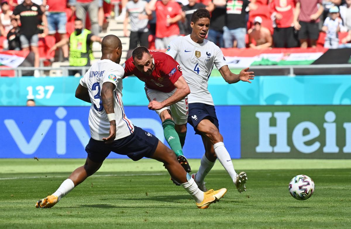 Болельщики из Франции пропустили один из матчей сборной / скриншот