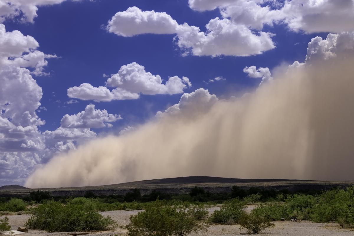 В Украине этим летом возможны пыльные бури / фото ua.depositphotos.com