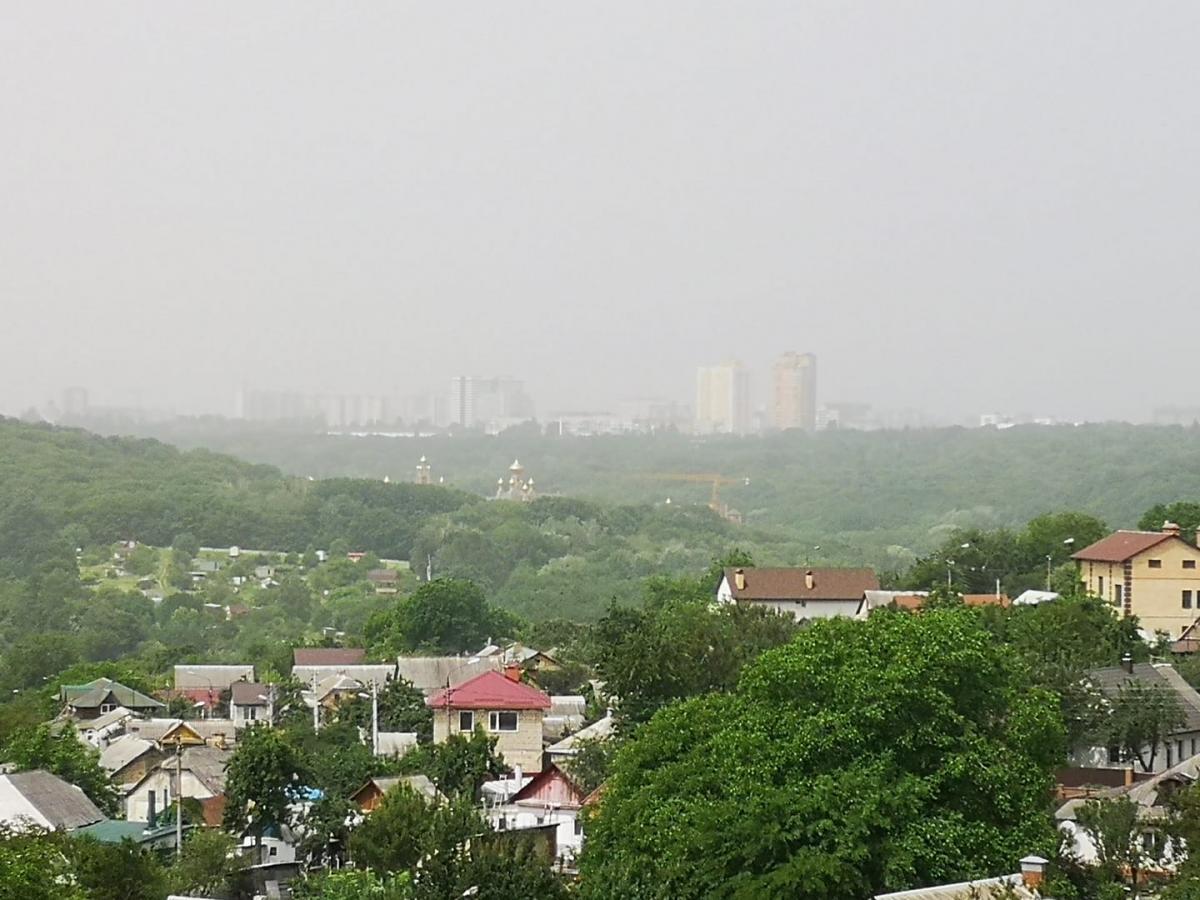 Киевский воздух больше всего загрязнен диоксидом азота, сообщилНиколай Кульбида / иллюстративное фото Facebook/Александр Зинченко