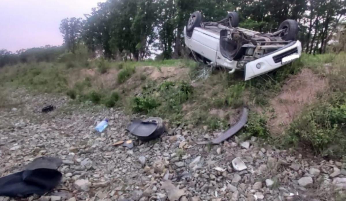 Россиянка устроила аварию из-за клеща / фото 25.мвд.рф