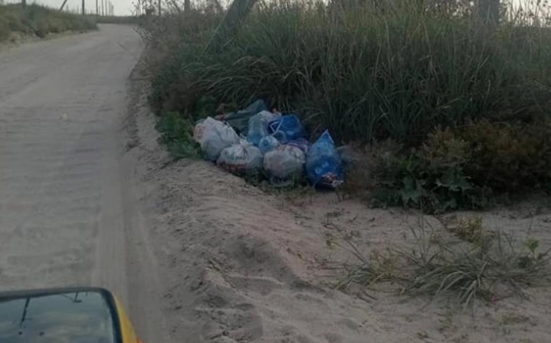 Туристы оставили кучи мусора вдоль дороги/ фото ria-m.tv