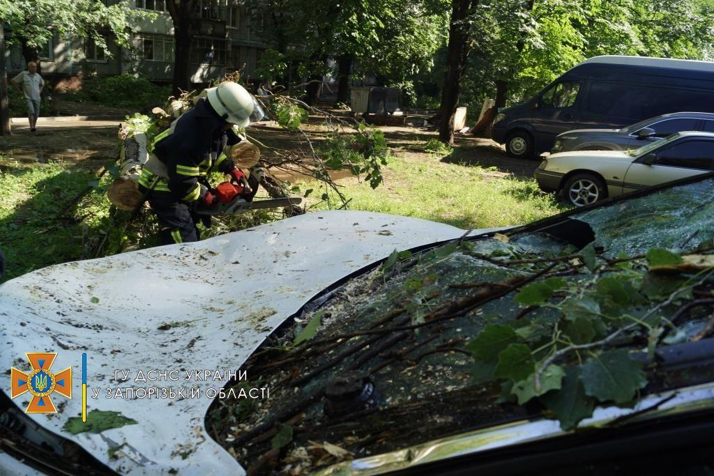 Спасатели оперативно ликвидировали последствия непогоды / фото ГСЧС