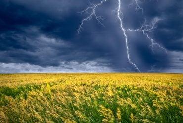 Завтра Украину будет штормить: ожидаются грозы, град и шквалы