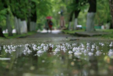 Дожди и похолодание: синоптики расстроили прогнозом на 19 сентября (карта)