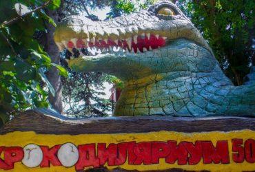 У Ялті затопило крокодиляріум, деякі тварини опинилися на волі (відео)