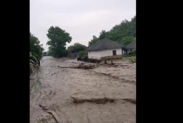 В Черновицкой области внезапный ливень затопил десятки сел, улицы превратились в реки (видео)