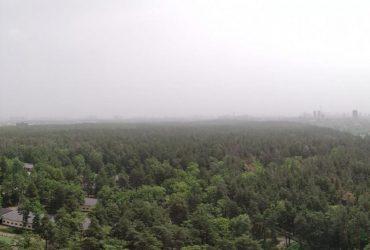 В Укргидрометцентре объяснили причины пылевой бури в Киеве