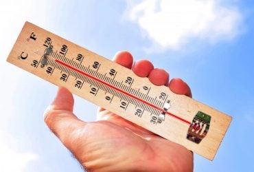 Синоптик объяснила, почему Украину накрыла аномальная жара