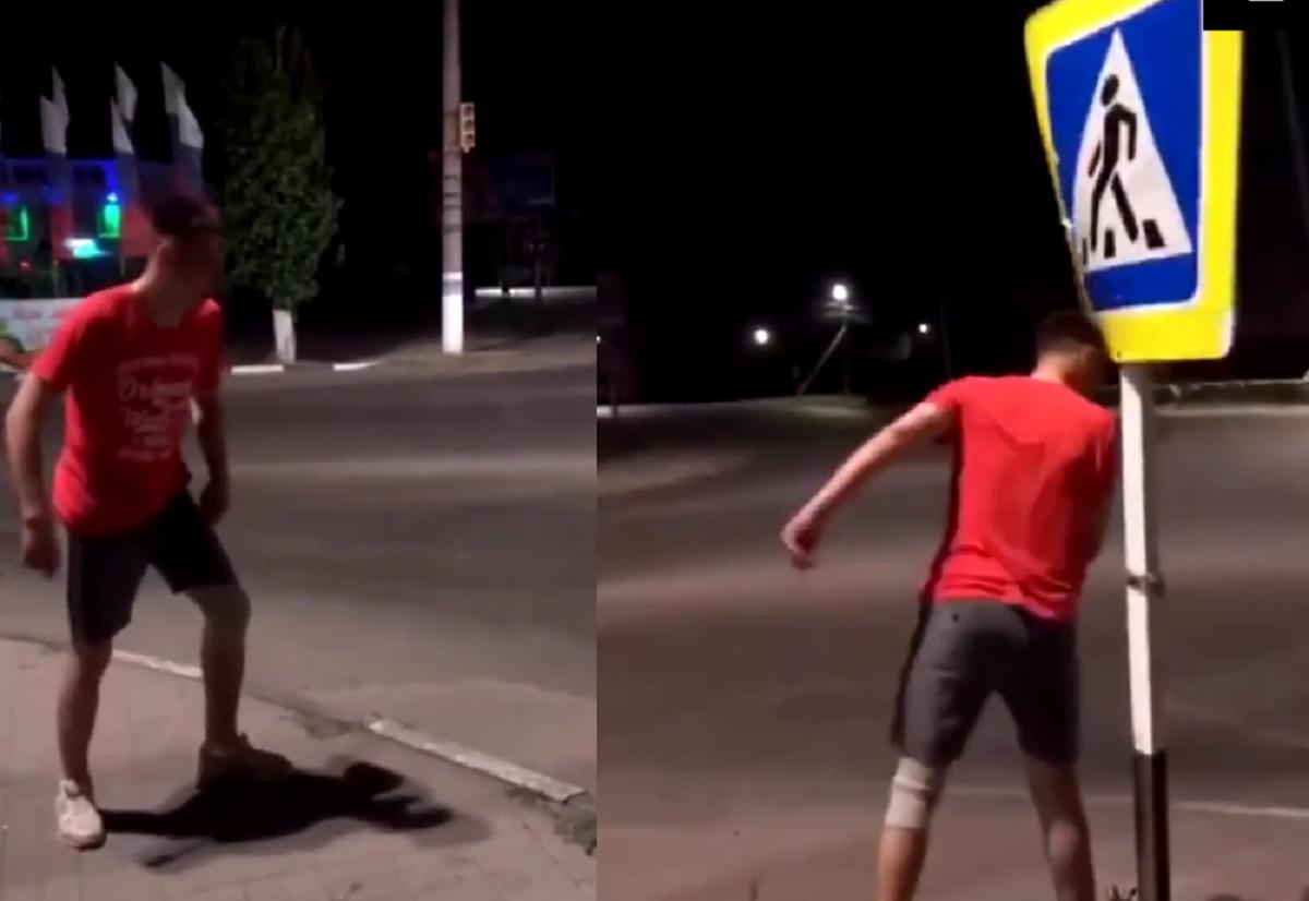 Жители Воронежской области напали на дорожный знак / скриншот