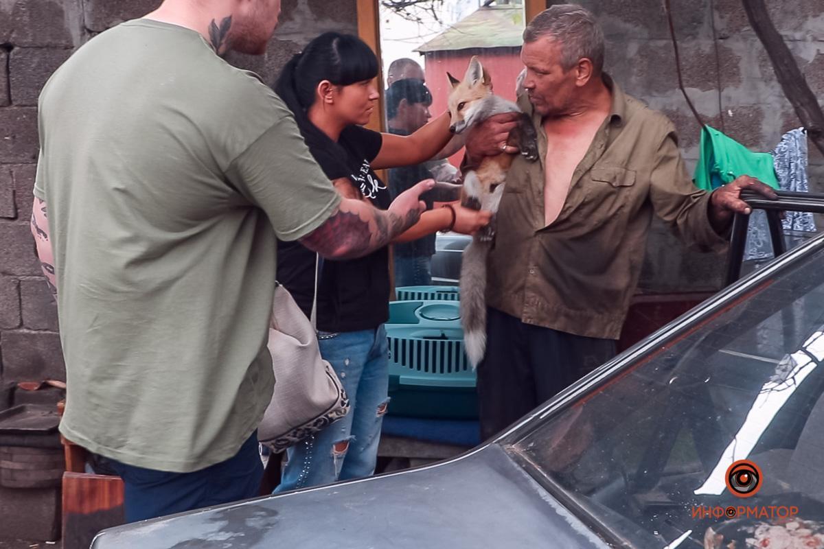 Отмечается, что владельцы старались заботиться о животных / фото Информатор