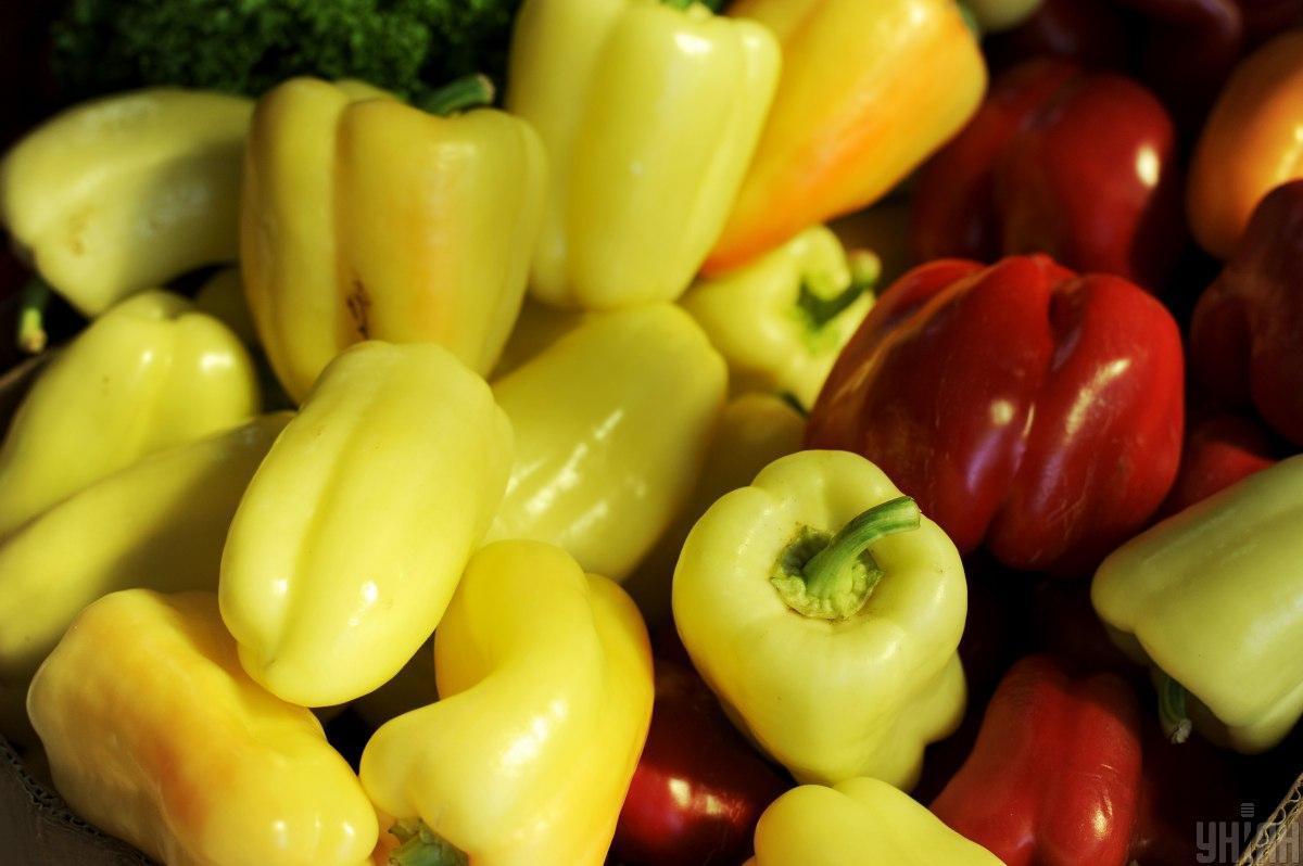 Эксперимент по выращиванию перца в условиях невесомости начался на МКС / фото УНИАН, Николай Тис