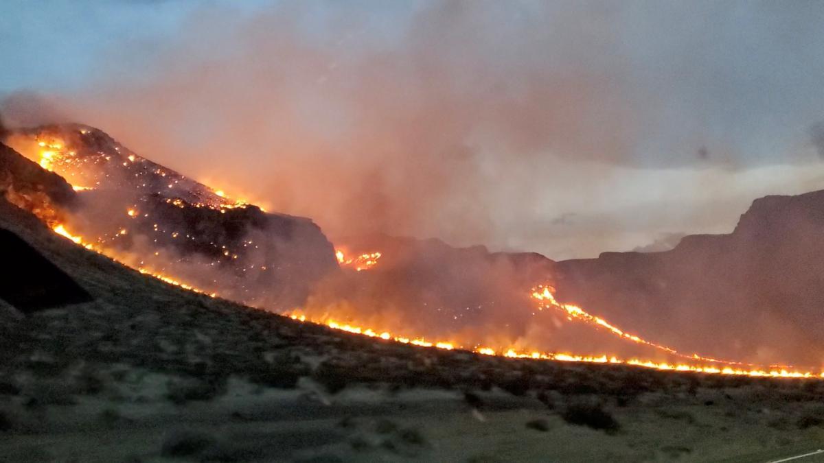 В США бушуют крупные лесные пожары / фото REUTERS