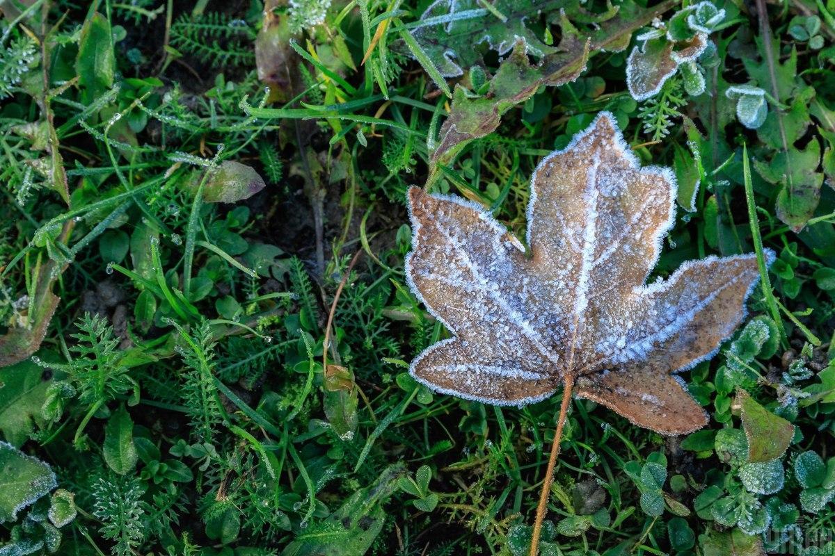 Сьогодні в Україні очікуються заморозки на поверхні грунту / фото УНІАН