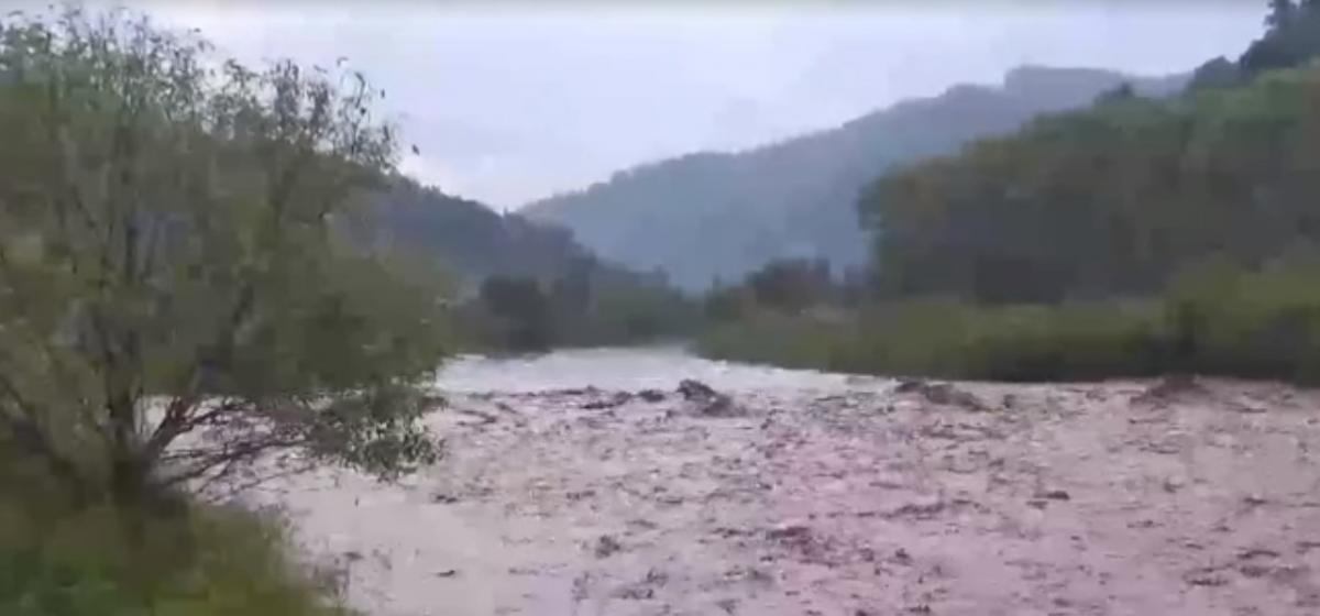 На Западной Украине бушует непогода / скриншот с видео