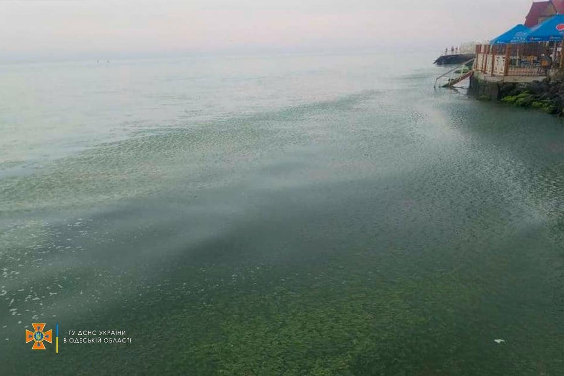 Ребенок исчез во время купания на пляже в Затоке / фото ГСЧС