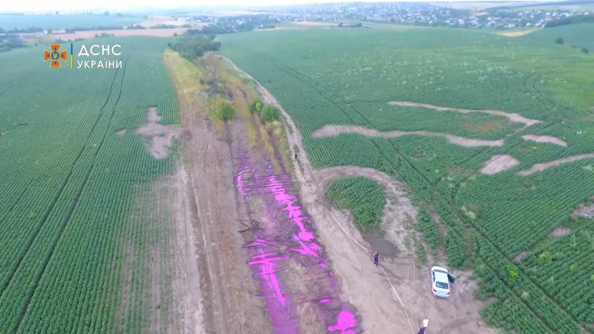 Рожева рідина на полі виявилася агрохімікатом проти шкідників / фото ДСНС України