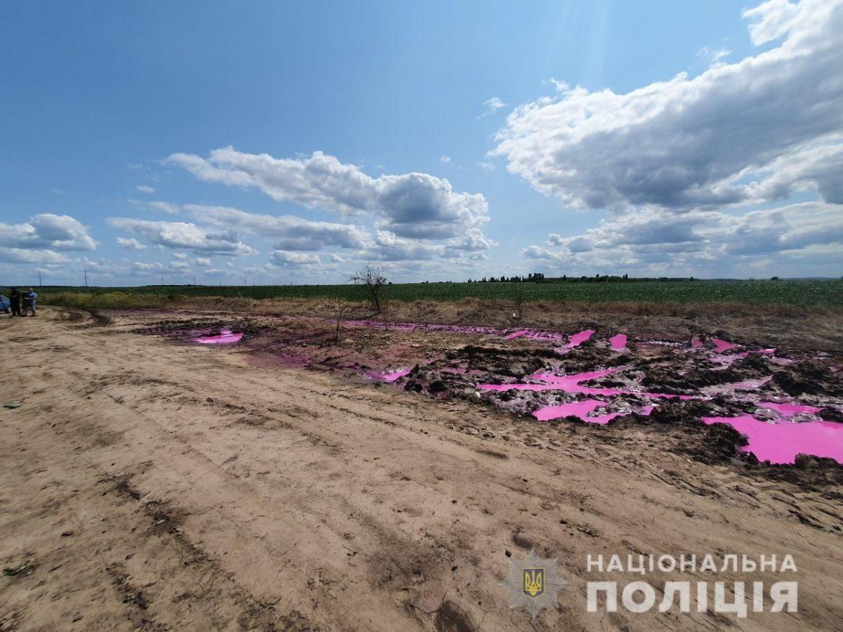 """Рожеві калюжі виявили 22 липня - після НС на заводі """"Рівнеазот"""" / npu.gov.ua"""
