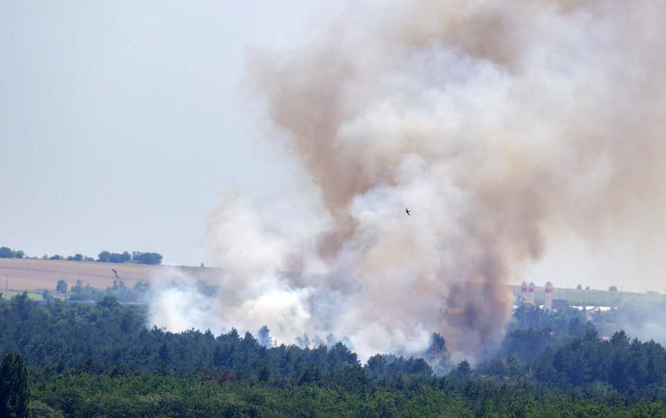 В Запорожье горит остров Хортица / фото Facebook/Максим Остапенко