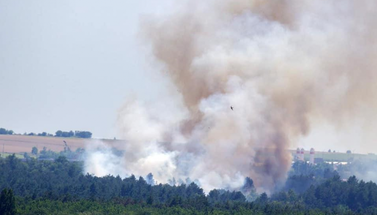 Масштабный пожар на острове Хортица / фото Facebook Максим Остапенко