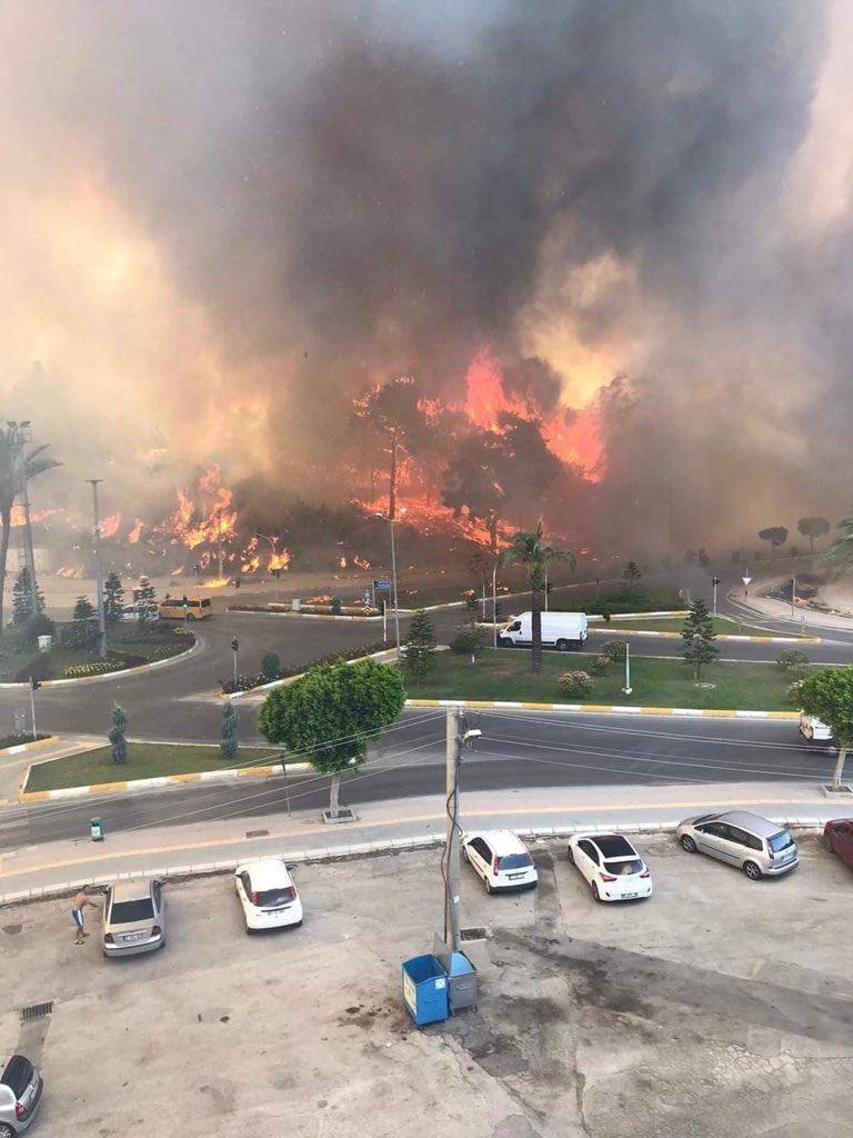 Потужні лісові пожежі охопили турецькі міста / фото Twitter