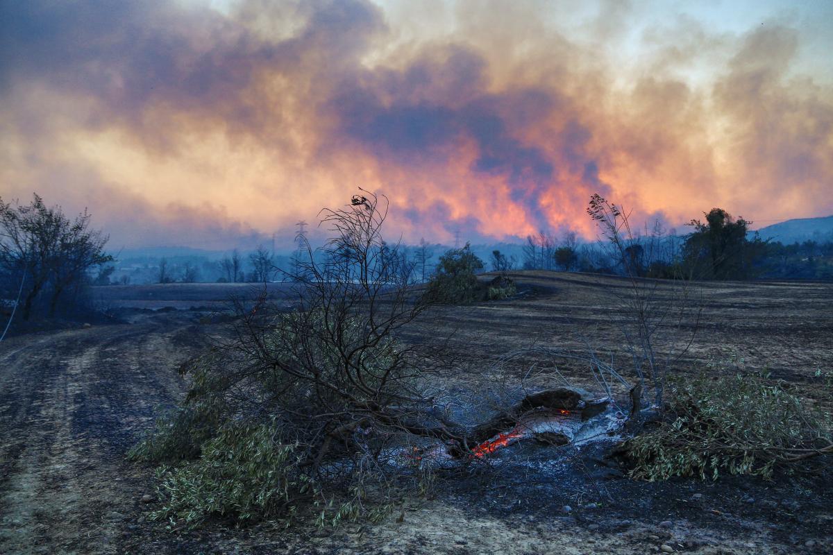 Масштабные лесные пожары охватили юг Турции / фото REUTERS