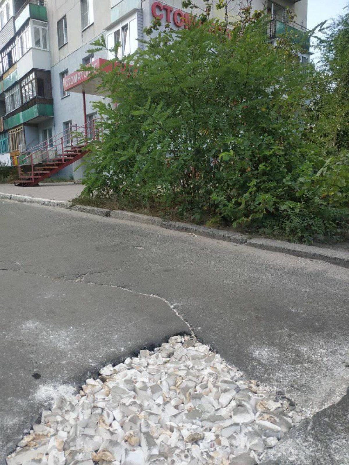 В Луганской области дорожную яму заделали слепками челюстей (фото) - 3 - изображение